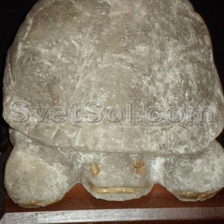 Черепаха 5,5кг